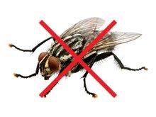 Top Shop Mosquito Stop